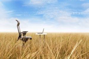 SEO San Antonio Web Design Rural Marketing Online Advertising Social Media